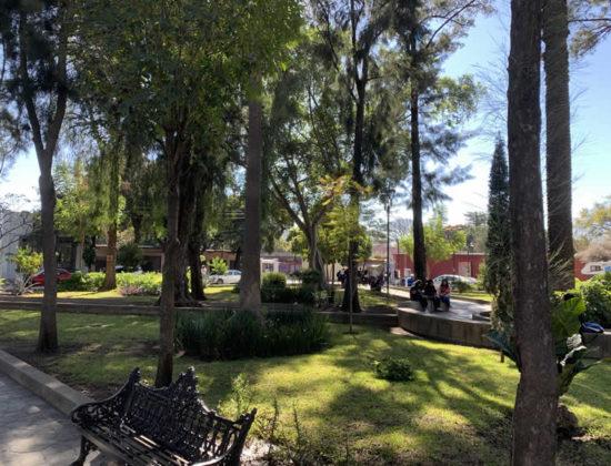 Jardín Conzatti