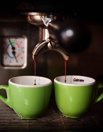 Nuevo Mundo Coffee Roaster