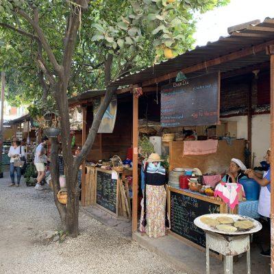 Mercado Orgánico La Cosecha