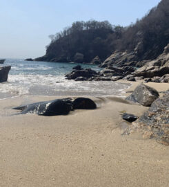 Playa del Muerto